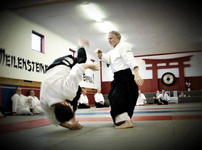 "(English) Evolutionary Aikido Seminar with Patrick Cassidy ""Sharing Balance"" @ Aikido Maastricht | Maastricht | Limburg | Pays-Bas"